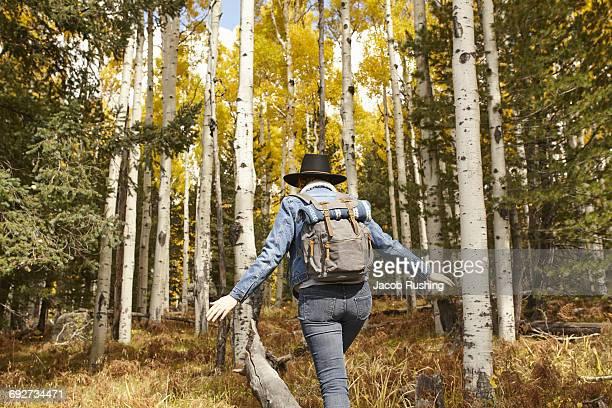 Woman hiking through rural setting, rear view, Flagstaff, Arizona, USA