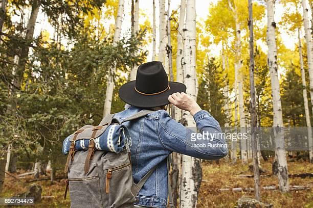 woman hiking through rural setting, rear view, flagstaff, arizona, usa - flagstaff arizona stock pictures, royalty-free photos & images