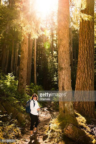 woman hiking through the woods -xxxl - ogphoto stock pictures, royalty-free photos & images
