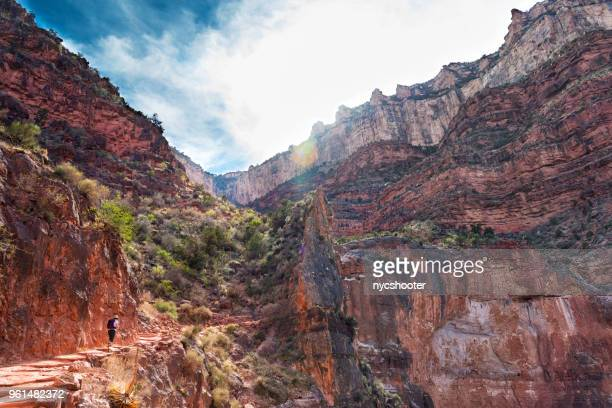 Woman hiking up to the south rim of the Grand Canyon.