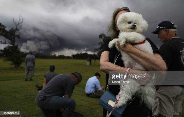 A woman hold her dog Tzippy at a golf course as an ash plume rises in the distance from the Kilauea volcano on Hawaii's Big Island on May 15 2018 in...