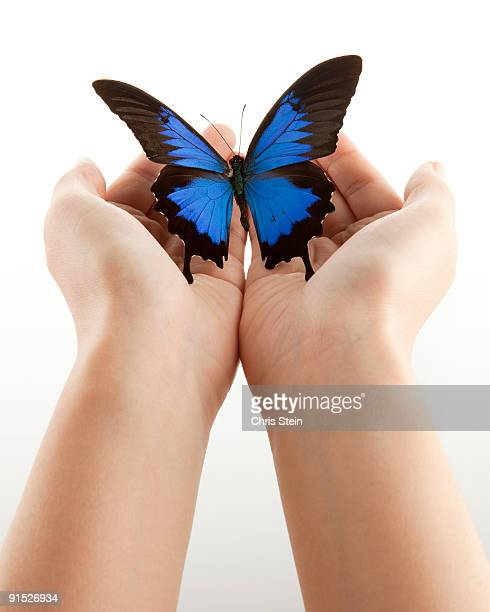 Woman holding a blue butterfly in her hands
