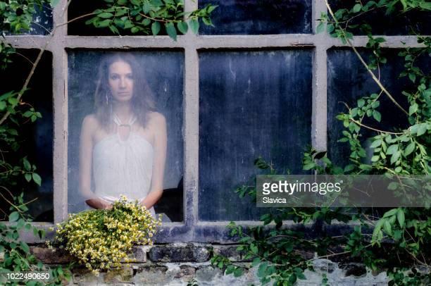 mujer con un ramo de flores de manzanilla - linda rama fotografías e imágenes de stock