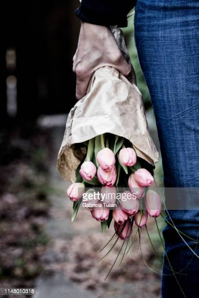 woman holding a bouquet of pink tulips - gabriela stock pictures, royalty-free photos & images