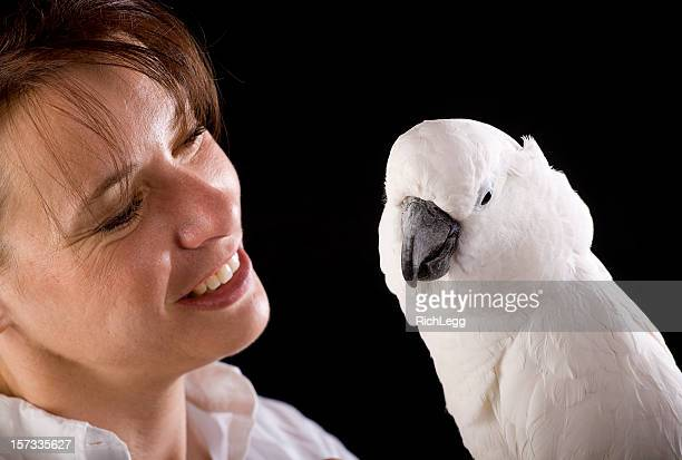 woman holding a cockatoo - tame stock photos and pictures