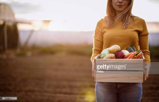 Woman holding a crate full of fresh vegetables