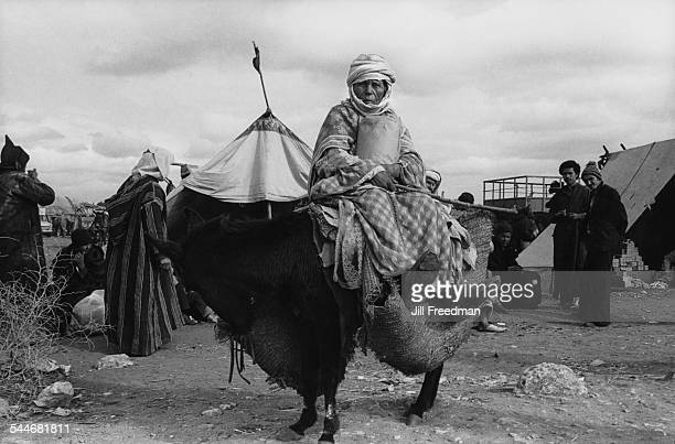 A woman holding a package and sitting on a donkey before a journey Morocco 1978