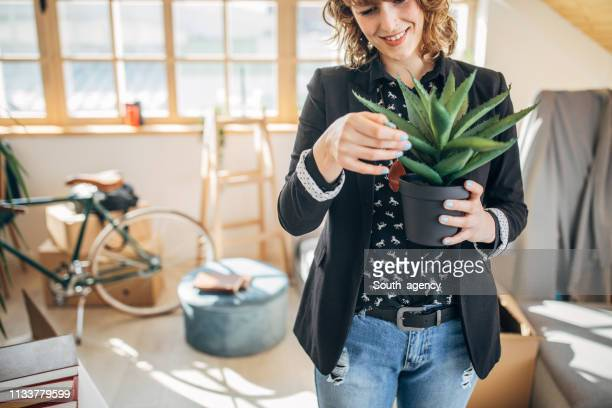 woman holding a plant for her new apartment - house rental stock pictures, royalty-free photos & images