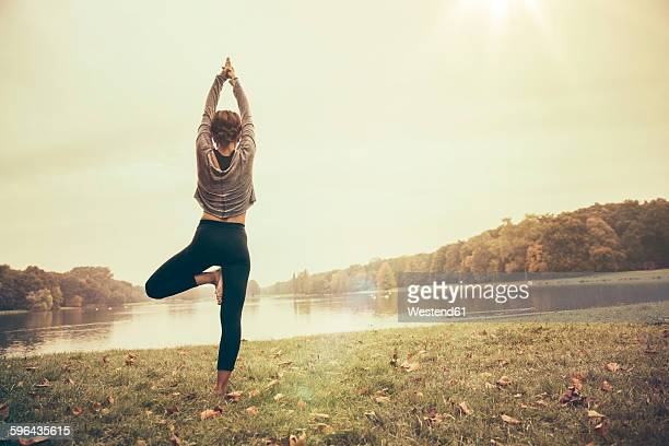 woman holding a vrksasana yoga pose in autmny park - tree position stock photos and pictures