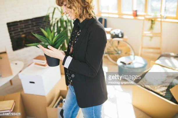 femme retenant une plante d'aloe vera - aloe vera plant photos et images de collection