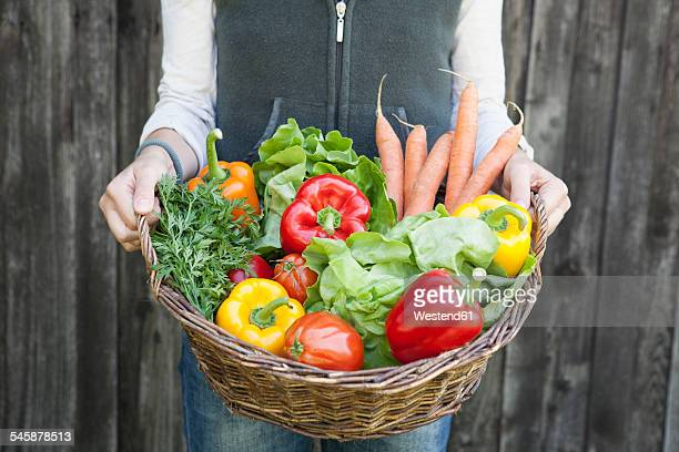 woman holding basket with vegetables - basket stock photos and pictures