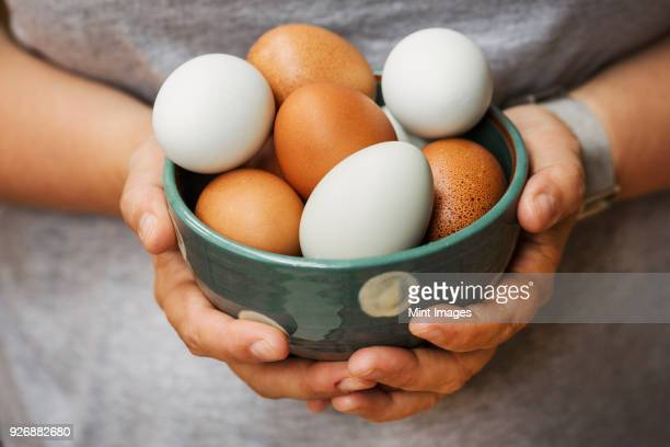 a woman holding bowl with fresh brown and white eggs. - ei stock-fotos und bilder
