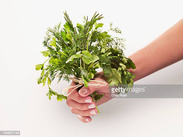 woman holding bunch of herbs - herbs stock photos and pictures
