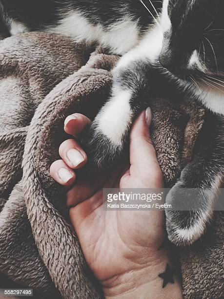 Woman Holding Cats Paw