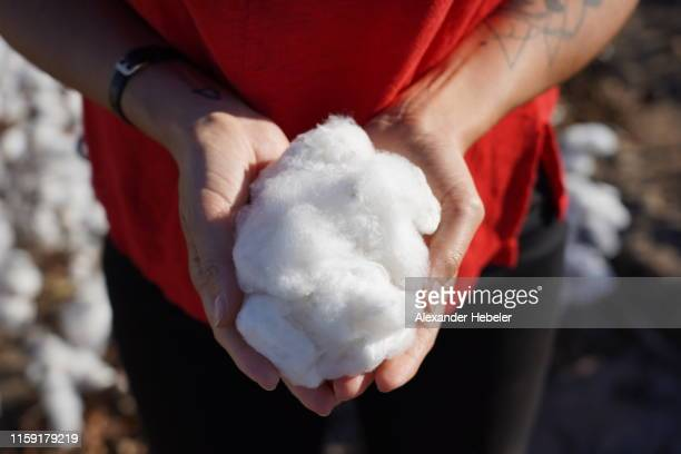 woman holding cotton - cotton stock pictures, royalty-free photos & images