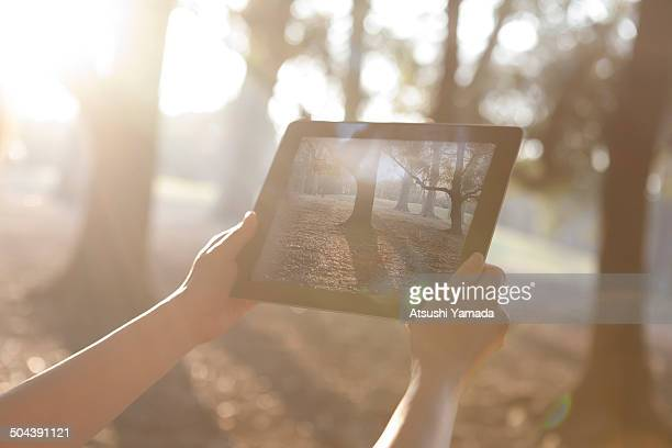 Woman holding digital tablet in forest