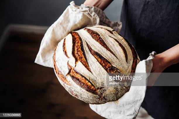 woman holding fresh baked sourdough bread - bread stock pictures, royalty-free photos & images