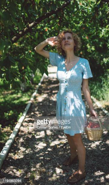 woman holding fruits in wicker basket while standing on footpath against trees - bortes stock-fotos und bilder