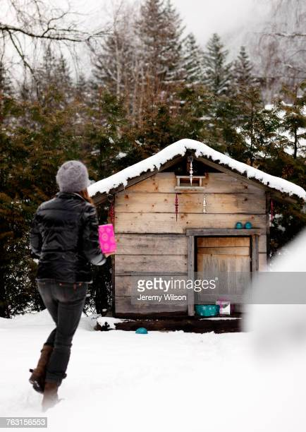 Woman holding gift, walking toward wooden cabin in rural setting, rear view