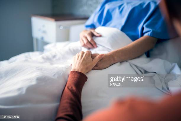 woman holding hand of sister in hospital bed - visita imagens e fotografias de stock