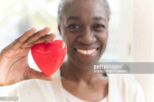 woman holding heart shape - heart disease stock pictures, royalty-free photos & images
