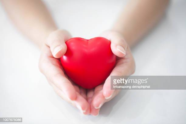 woman holding heart,heart disease - heart disease stock pictures, royalty-free photos & images