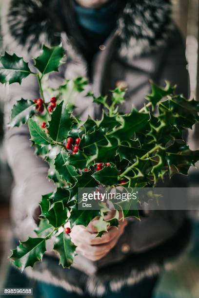woman holding holly branches - christmas holly stock photos and pictures