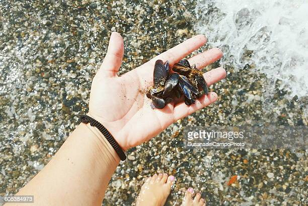 Woman holding mussels in her hand on the beach