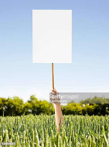 Woman holding placard out of crop field