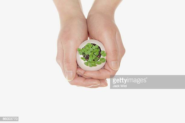 Woman holding plant in egg shell