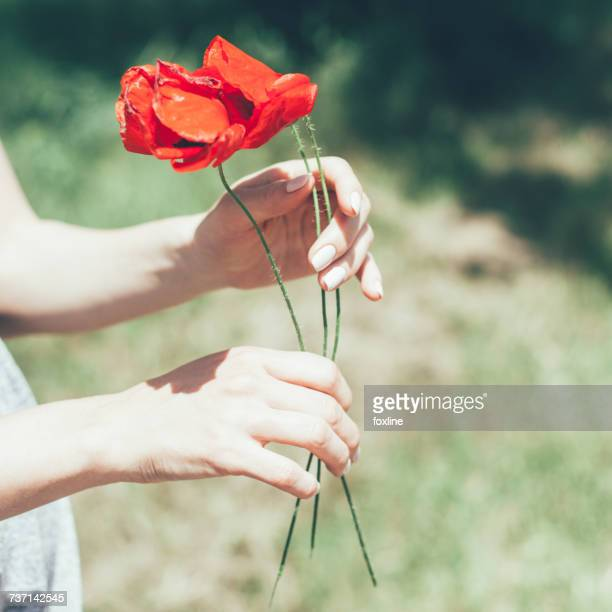 Woman holding poppies