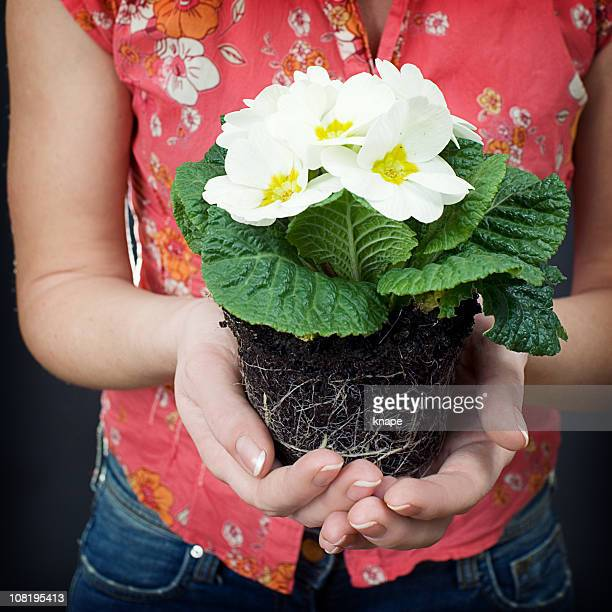 Woman Holding Potted Flowers