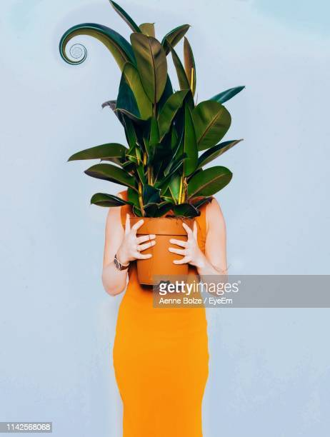 woman holding potted plant while standing over blue background - obscured face stock pictures, royalty-free photos & images