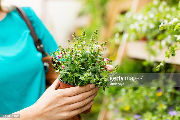 Woman Holding Small Potted Plant