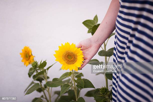 Woman holding sunflower in her hand