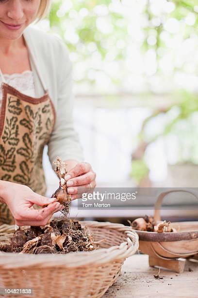 Tulipa mulher segurando a lâmpadas