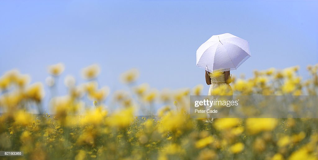 Woman holding umbrella in field of yellow flowers : Stock Photo