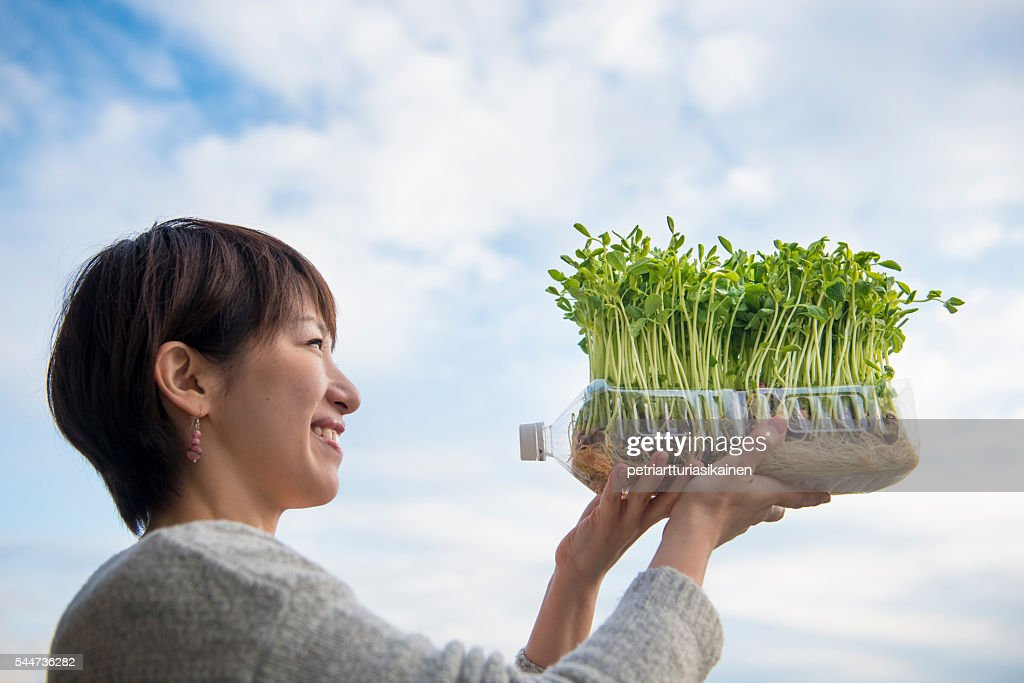 Woman holding vegetables growing in plastic bottle : Stock Photo