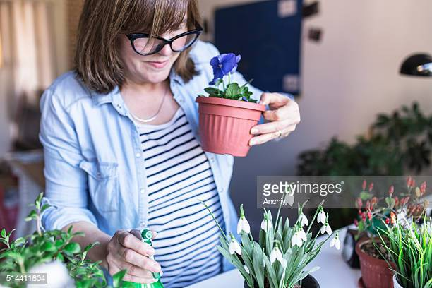 Woman holding Viola flower in her hands
