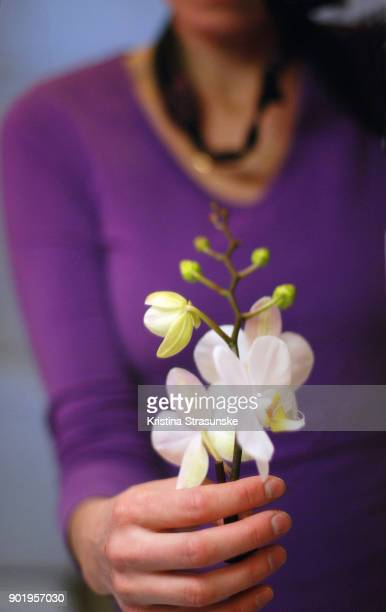 woman holding white orchid in her hand - purple shirt stock photos and pictures