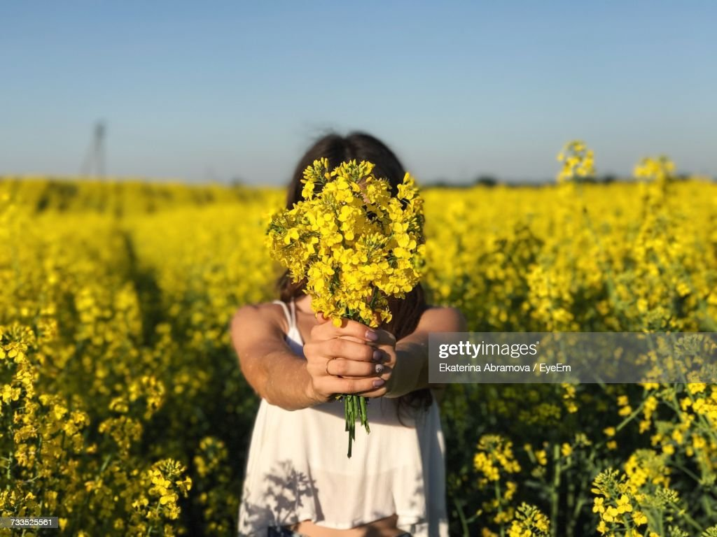 Woman Holding Yellow Flowers In Field Stock Photo Getty Images