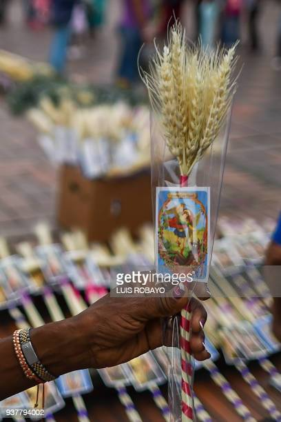 A woman holds a bouquet of spikes during the Palm Sunday celebration in Cali Valle del Cauca department Colombia on March 25 2018 Palm Sunday...