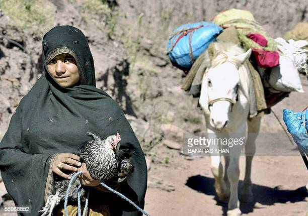 44 Women Killing Chicken Pictures, Photos & Images - Getty Images