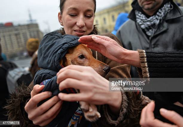 A woman holds a dog during a meeting against killings of stray dogs in Bucharest on March 8 2014 Authority for the Supervision and Protection of...