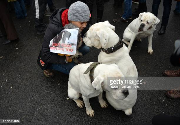 A woman holds a sign reading Street dogs need love too during a meeting against killings of stray dogs in Bucharest on March 8 2014 Authority for the...
