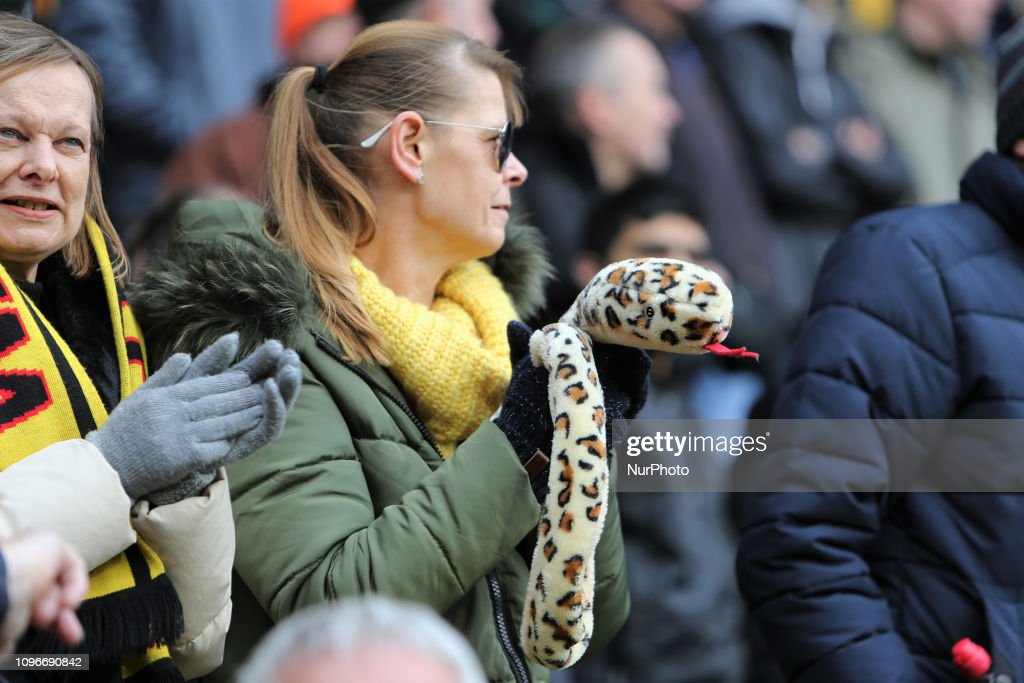 A woman holds a toy snake during English Premier League