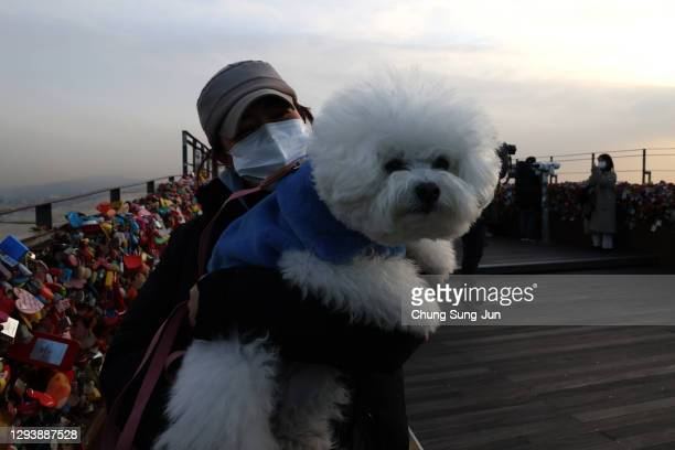 Woman holds her dog at N Seoul Tower while enjoy the New Year Eve on December 31, 2020 in Seoul, South Korea. Seoul's city government has cancelled...