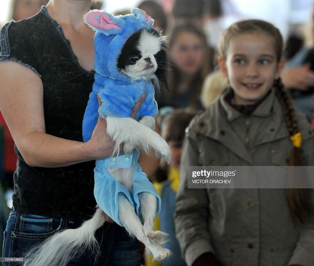 A woman holds her dressed dog during an International dog exhibition in Minsk on June 5, 2010.