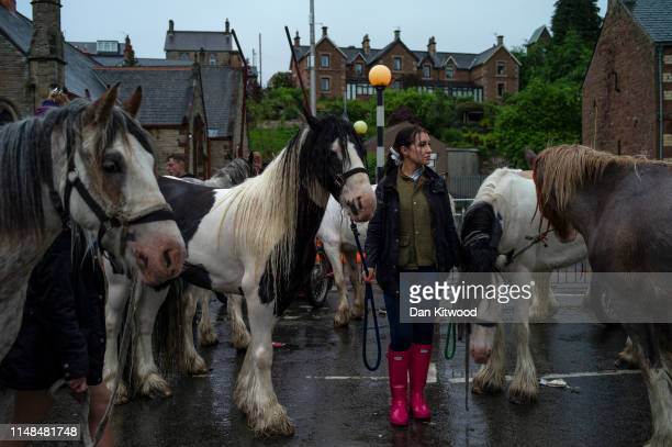Woman holds horses during the annual Appleby Horse Fair on June 07, 2019 in Appleby-in-Westmorland, England. The annual gathering for Gypsy, Romany...