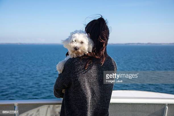 woman holds little white dog during ferry crossing - ferry stock photos and pictures